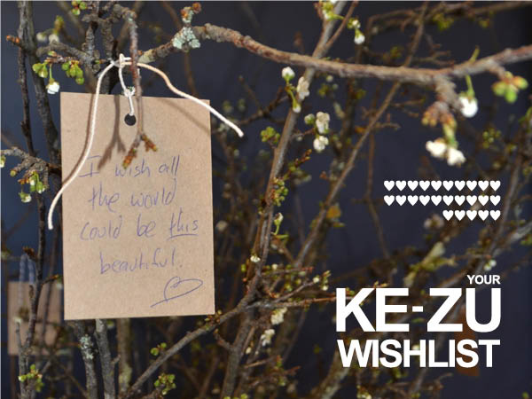 The KE-ZU Wishlist – Week 5 …